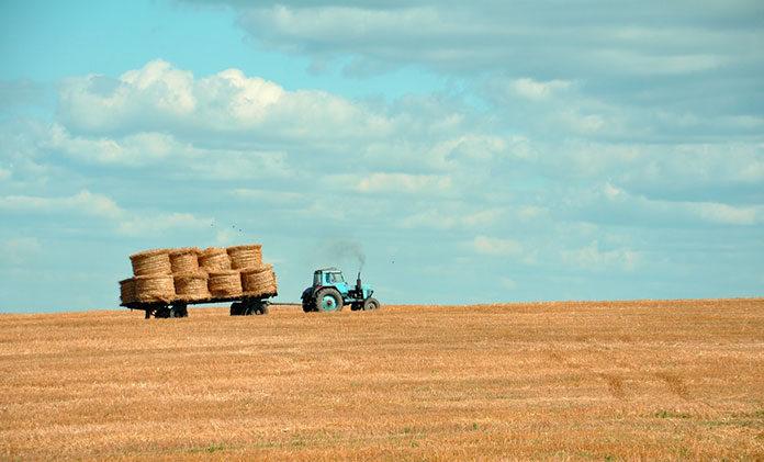 Jak kupować taniej sprawne maszyny budowlane i rolnicze